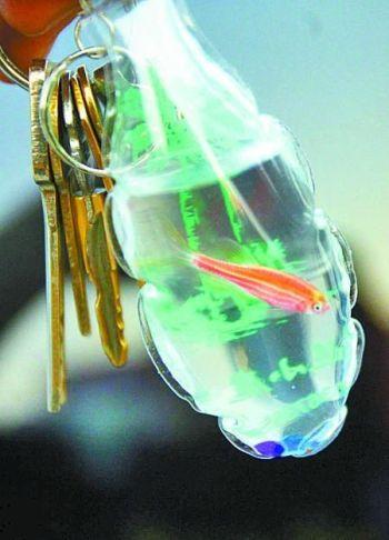 balık anahtarlık